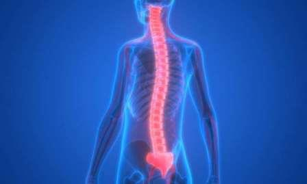 #HEALTH: These natural methods can keep bones strong and ...